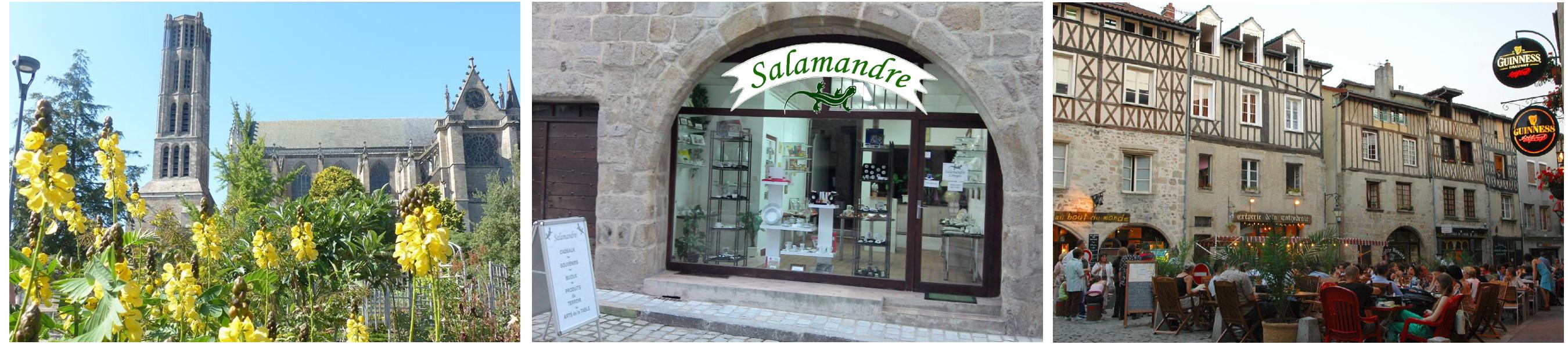 visite-salamandre